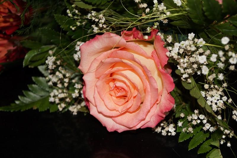 Роза от скульптора Надежды Востриковой